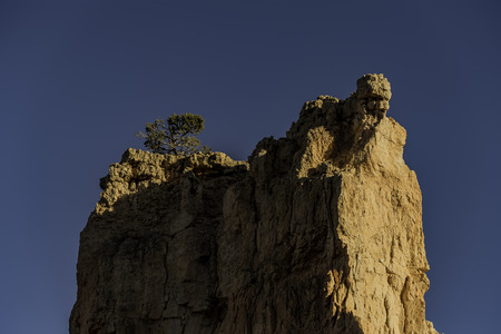 Top hill with one tree above in Bryce Canyon