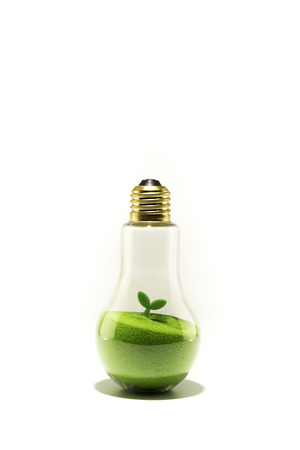 Green leaf on sand in the light bulb isolated on white background
