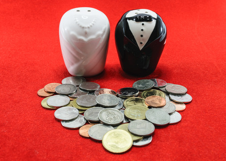 bride and groom made of salt and pepper bottle with coin for wedding cost concept