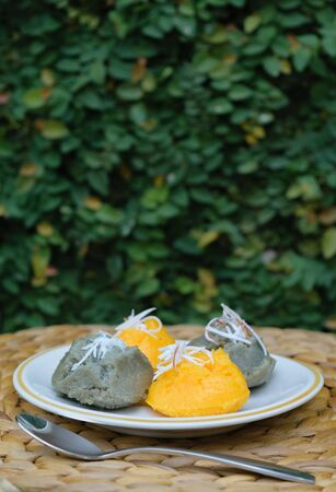 scraped: Sweet sugarpalm cake with scraped coconut with garden background Stock Photo