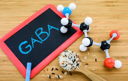 mammalian: GABA molecule is important neurotransmitter  in the mammalian central nervous system Stock Photo