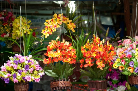 pedicel: Hanging flower for show