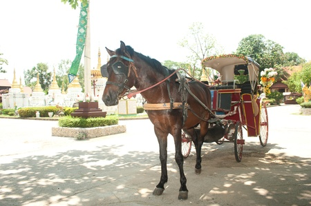 Horse carriage in Northern of Thailand  photo