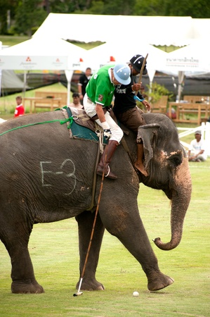 HUA HIN, THAILAND -SEPTEMBER 8  Unidentified polo players play in elephant polo games during the 2011 King  s Cup Elephant Polo match on September 8, 2011 at Suriyothai Camp in Hua Hin, Thailand