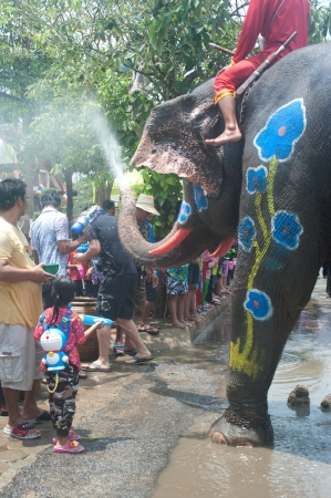AYUTTAYA, THAILAND - APRIL-13   Songkran Festival is celebrated in a traditional New Year s Day from April 13 to 15, and dancing with elephants on April 13, 2012 in Ayuttaya, Thailand