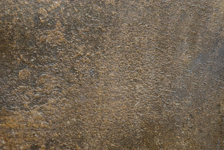 pitted: Bronze texture
