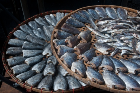Sun fish in threshing basket  Stock Photo - 16394160