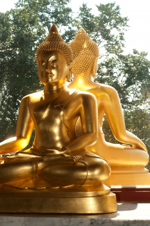 Twin golden buddhas  photo