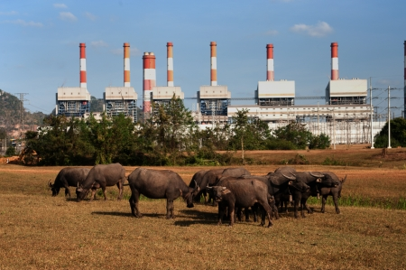 bridger: The power station in Thailand  Stock Photo