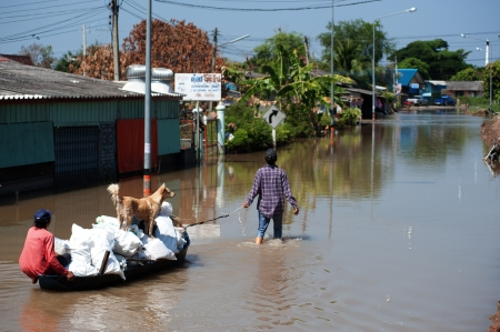 AYUTTAYA,THAILAND - NOVEMBER 13  People floating their belongings while wading through deep water during the monsoon flooding of November 13, 2011 in Ayuttaya, Thailand   Stock Photo - 16704889