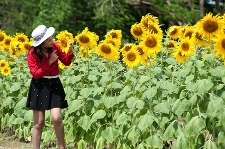 Pretty Asian woman in red dress in a sunflower field  photo