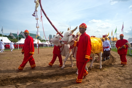 atender: BANGKOK, Tailandia-MA Y13 Los funcionarios del gobierno no identificados asistir a la ceremonia - Realizar un comienzo auspicioso para la temporada de siembra en la ceremonia de arado real en May13, 2013 en Bangkok, Tailandia