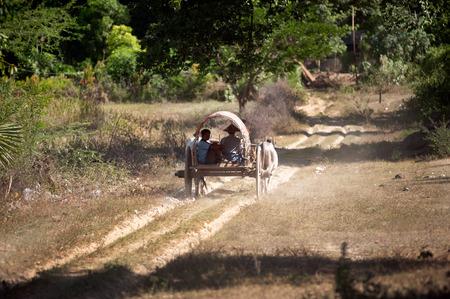 bullock: Ox cart to the village near Mingun Pagoda,Myanmar  Stock Photo