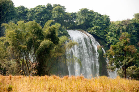 chaff: Straw in rice field front of Ban Gioc waterfall in Vietnam.