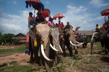 Ordination parade on elephant\ Editorial