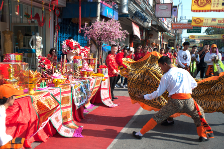 cerebrate: Group of Lion dancing performers during the celebration,Of Chinese New Year in Thailand.
