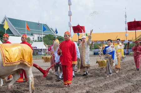 BANGKOK, THAILAND - MAY 13,2015 : Unidentified Government officials sowing the grain attend the ceremony -Perform for an auspicious beginning for planting season on the Royal Plowing Ceremony on May 13,2015 in Bangkok city,Middle of Thailand. Editorial