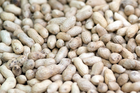 Peanuts seeds background.