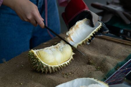 Asian pretty woman tearing durian with a knife, durians, often called the king of fruits peels fruits. It is a big fruit with a strong smell & a hard shell with sharp thorns. Banco de Imagens