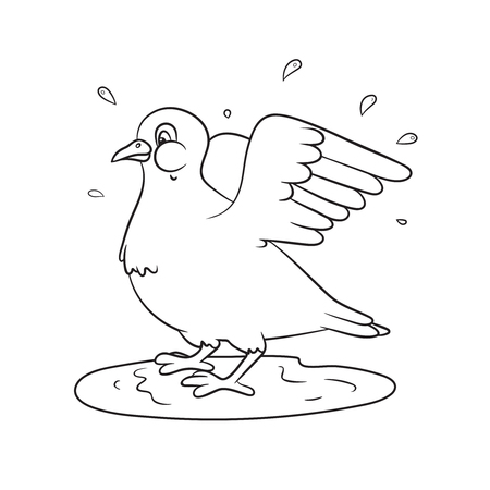 Dove splashing in the water. Spring theme. Greeting cards or coloring books.