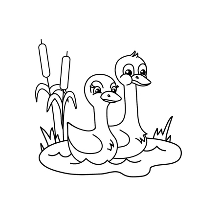 Couple of swans in the pond. Line art for coloring books.