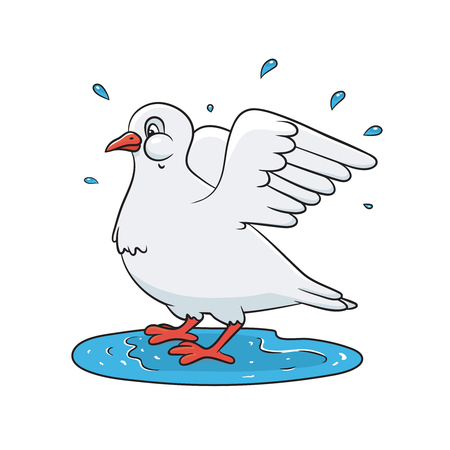Dove splashing in the water. Spring theme. Vector colored illustration for print, greeting cards.