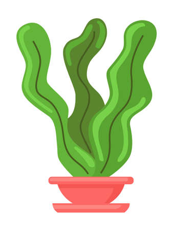 Pot with houseplant isolated at white background. Vector illustration of decorative green plant with long leaves in ceramic pot. Indoor plant concept, domestic greenery.