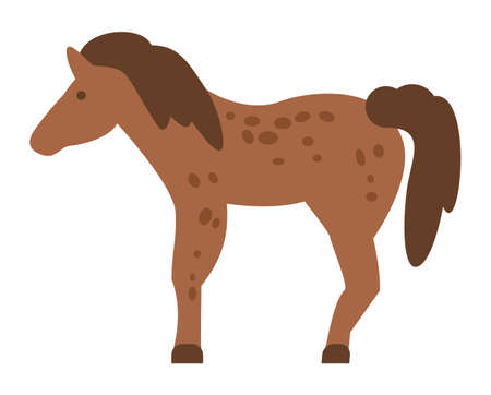 Mixed breed horse standing, vector illustration isolated on white background flat style. Lush mane brown horse with with dark spots on the body. Equine farm animal for horse riding or transportation