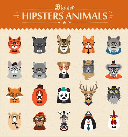 animal print: De manera lindo Hipster Animales de vectores iconos de gran conjunto ilustrador vectorial concepto moderno de diseño plano