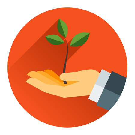 small tree: Small tree in a hand modern concept vector flat style