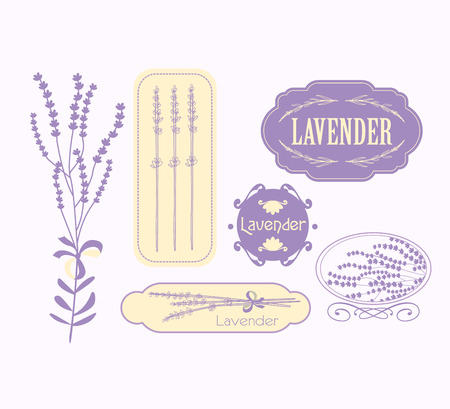 Vintage lavender background, aromatherapy and spa packaging  vector design Illustration