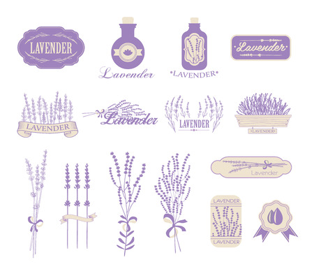 barium: Vintage lavender background, aromatherapy and spa packaging design Illustration