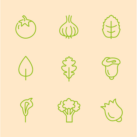 sweet pea: Flat Line Vegetables Icons set Vector Illustration