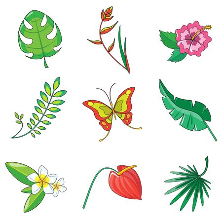small vein: Tropical plants and animals icon vector set Illustration
