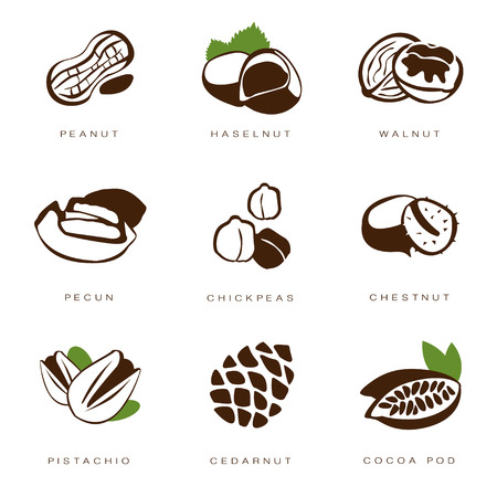 filberts: Web icons collection nuts, beans and seed vector