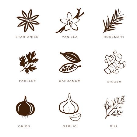 condimentos: Icono del Web Conjunto colorido especias, condimentos y hierbas Vectores