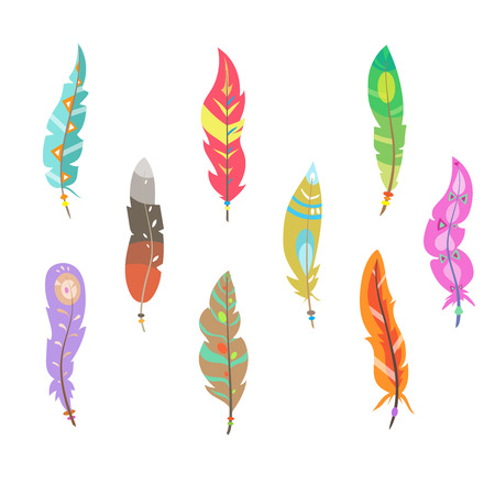 bird feathers: Vector colored feathers set. Bird feathers painted in colorful patterns Illustration