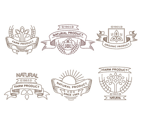 Vector retro farm fresh labels, badges and design elements Çizim