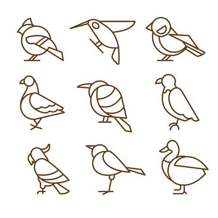 pigeon owl: Bird icons, thin line style, flat design vector