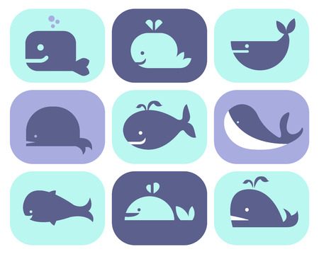 googly: Collection of vector whale icons and illustrations