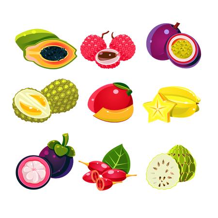 tamarillo: Colourful set of tropical exotic fruits. Vector Illustration Illustration