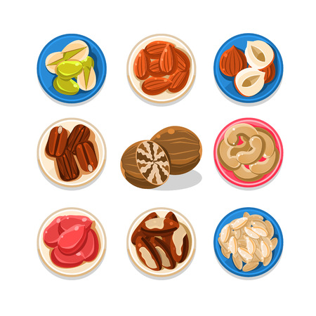 brazil nut: Set of nut and seeds icons vector illustration collection Illustration