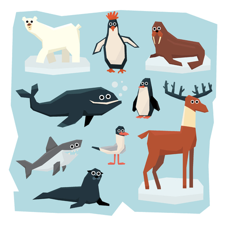 antarctic: Vector set of Arctic and Antarctic animals. Collection of flat style vector illustration