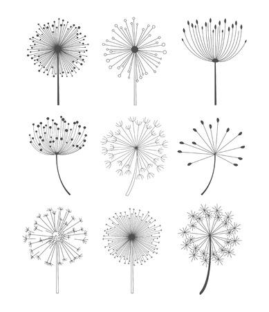 Abstracte paardebloemen die in lineaire stijl, zwart-wit vectorillustratie worden geplaatst