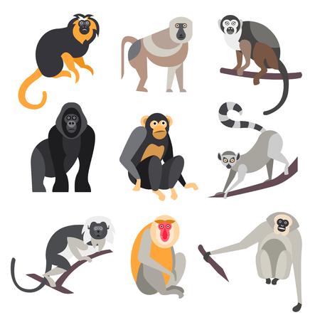 animales del zoologico: Colecci�n de primates en estilo plano, ilustraci�n