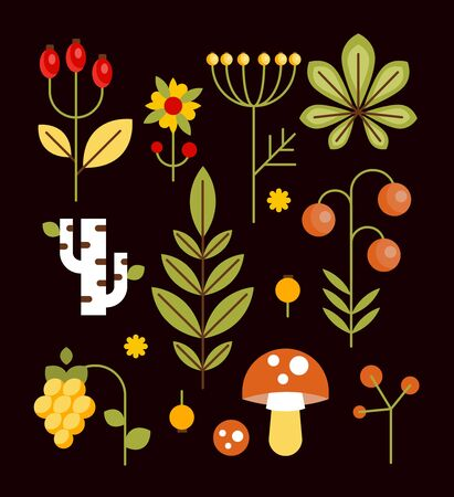 seasonal forest: Autumn seasonal forest elements with chestnut leaves, flowers, mushrooms and berries. illustration in flat style Illustration