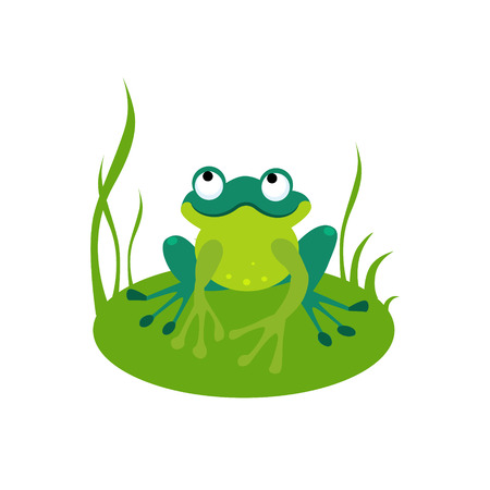 Vector illustration of a green frog sitting on a leaf Vectores