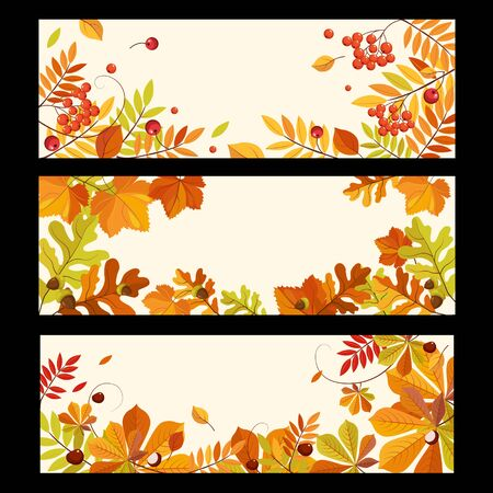ashberry: Banners with autumn elements, leaves and berries, colorful vector illustration Illustration