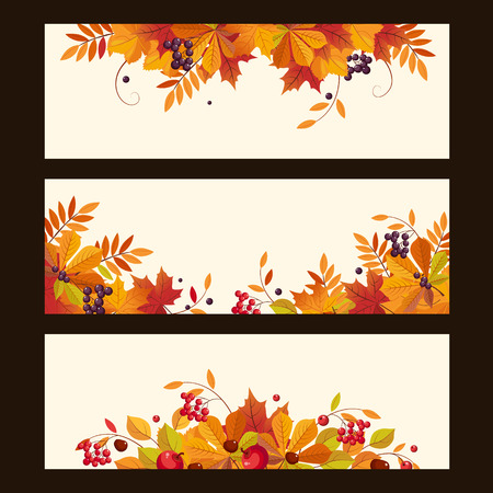 chokeberry: Banners with autumn elements, leaves, chestnuts and ripe berries, colorful vector illustration