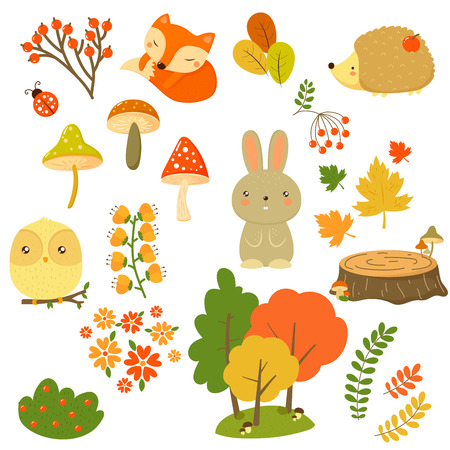 Fall nature elements and animals in flat design, vector illustration